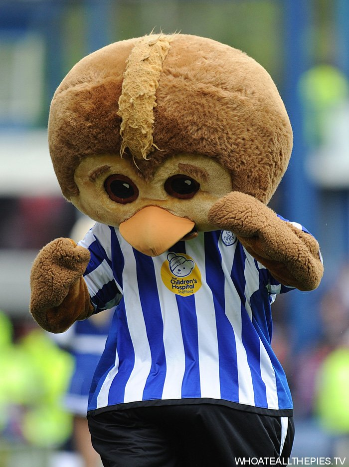 sheffield wednesday - photo #39
