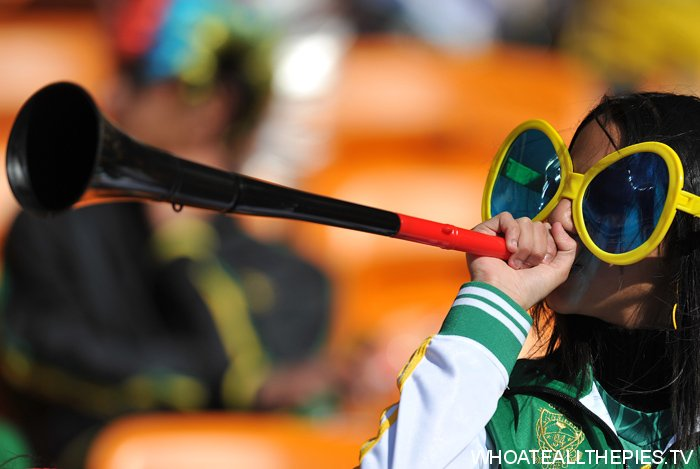 pa-photos_t_world-cup-2010-south-africa-spectacles-photos-1406d_0