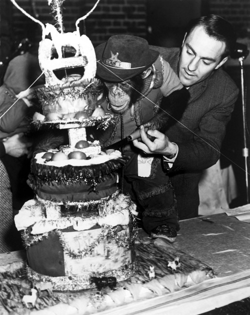 The Black-And-White-Years: Jimmy Greaves Feeds Cake To A ...