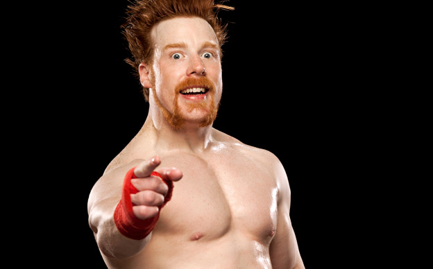 Sheamus earned a  million dollar salary, leaving the net worth at 7 million in 2017