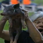 Old Brazilian Lady Takes Live Pig To Atletico-GO vs Palmeiras (Video)
