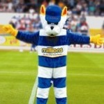 Grizzly Scenes As Greenock Morton's 'Cappie The Cat' Mascot Kidnapped And Dismembered