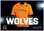 Wolves Shirt Launch Shot