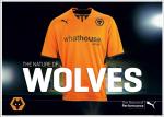 Wolves Shirt Launch Shot