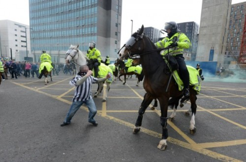 police-horse-newcastle