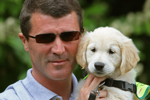 Irish Guide Dogs for the Blind Super Value Shades 2010 Campaign