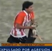 Argentinian Player Enzo Jimenez Sent Off For Extreme Cruelty To Pitch-Invading Dog (Video)