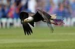 Soccer - Barclays Premier League - Crystal Palace v Tottenham Hotspur - Selhurst Park