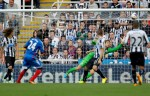 Soccer - Barclays Premier League - Newcastle United v Hull City Tigers - St James' Park