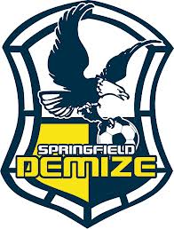 springfield-demize