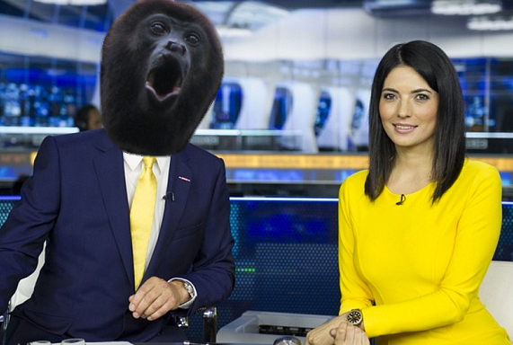 sky-sports-deadline-monkey