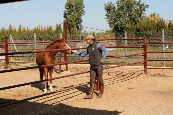 sergio-ramos-horse