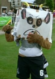 BKAM_Sports_Mascot_TelfordBox