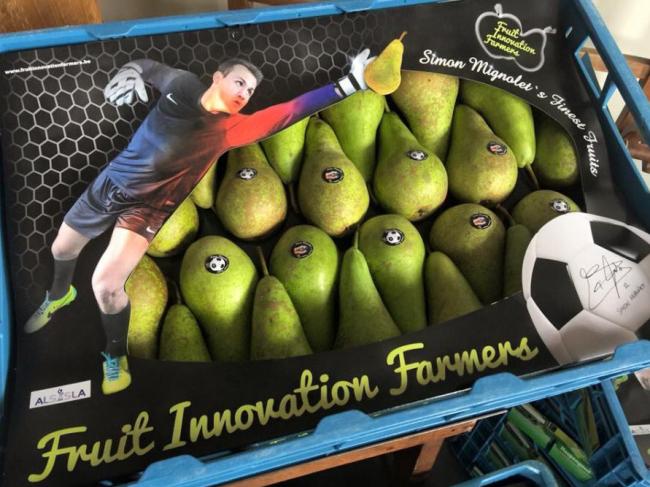 mignolet-pears