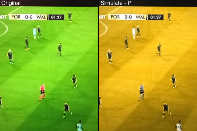 wales-portugal-colour-blindness