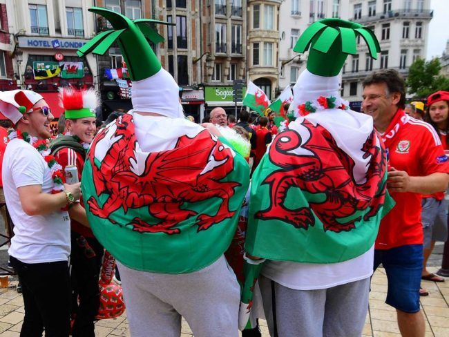 wales-supporters