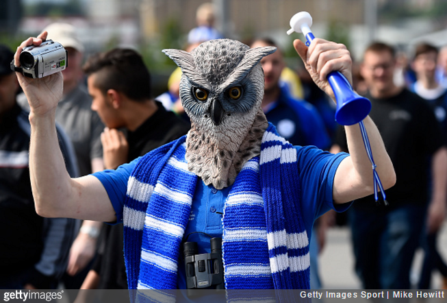 sheff-wed-fan-owl